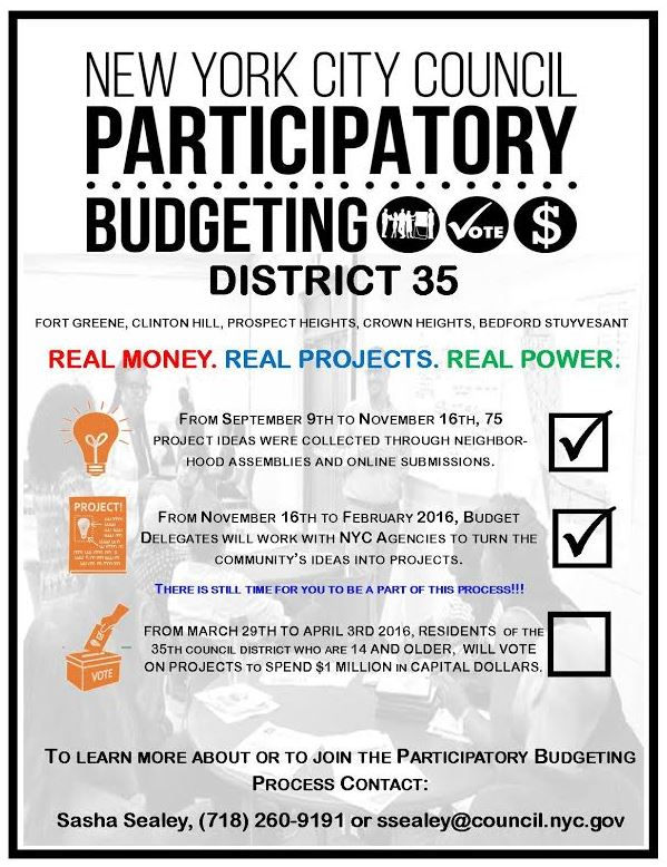 Volunteer With City Council's Participatory Budgeting